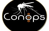 Il progetto Life Conops:  sistemi di sorveglianza  delle zanzare invasive