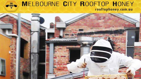 A Melbourne il miele si produce sui tetti del centro