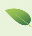 Torna Compraverde-Buygreen, il forum degli acquisti verdi e della green economy