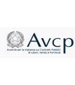 AVCP: come programmare, progettare ed eseguire i contratti di servizi