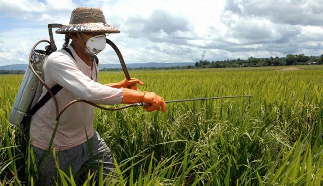 Regolamento biocidi, ecco cosa cambia per l'industria
