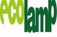 Movimentazione rifiuti di Ecolamp: ora completamente tracciata e in digitale