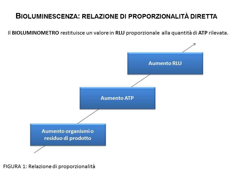 La bioluminescenza: un metodo rapido per la validazione dei processi di sanificazione nella ristorazione ospedaliera