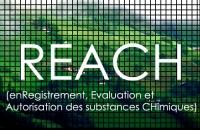 3 Conferenza Nazionale sul Regolamento Reach