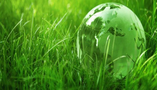 Boom dell'ecoturismo sostenibile