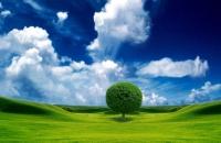 Clean Green Afidamp Award: ecco le nomination per il prodotto più green