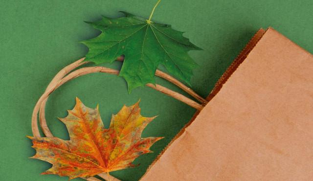Imprese green e innovative premiate a Compraverde Buygreen