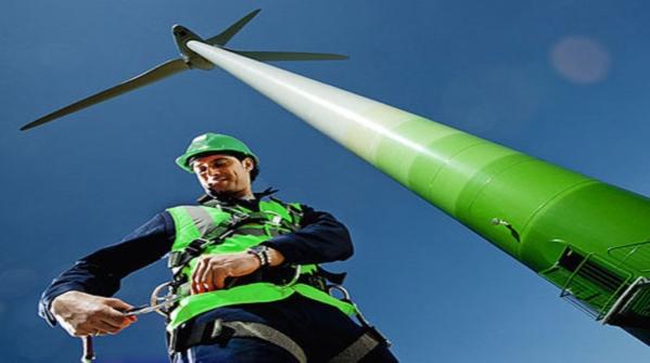 Una guida fa luce sui lavori di un futuro verde