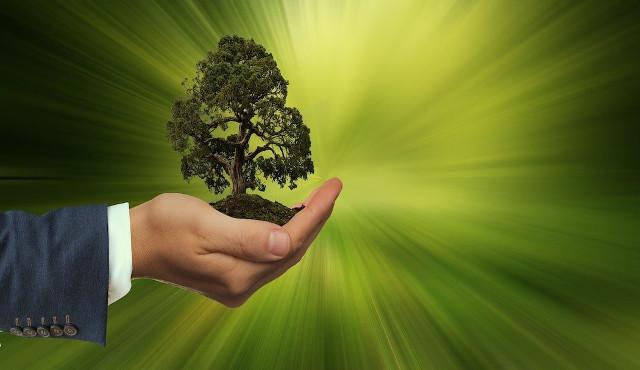 Essere un'azienda sostenibile è possibile