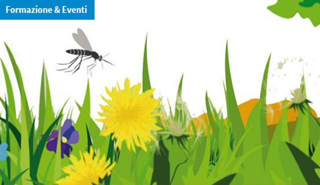 Zanzare, è online sulla piattaforma IZSVe il corso ECM