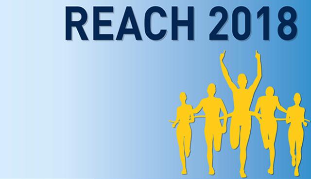 Reach: ultima scadenza 31 maggio 2018
